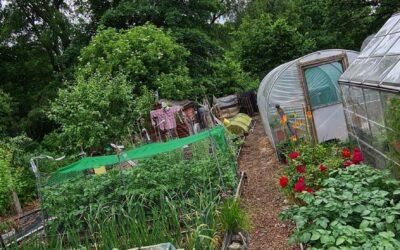Alkincoates Allotments wins the triple in this years Allotment Awards.