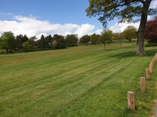 A park 1