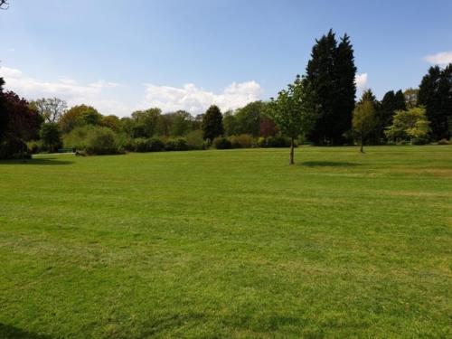 A park 2