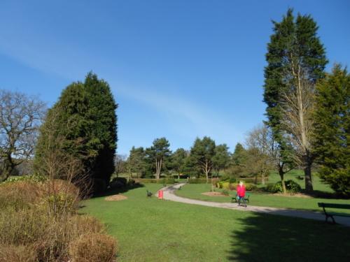 A park 3